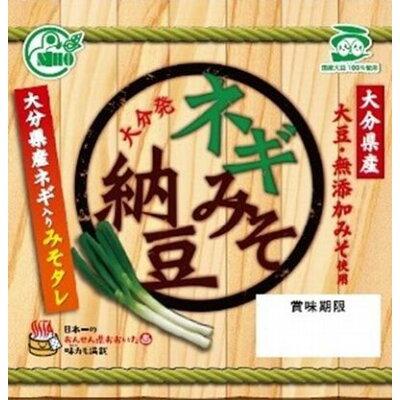 二豊フーズ 国産ネギみそ納豆 40gX3個