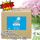 フジ日本精糖 プロ用水揚促進剤ハイ・スピード20L