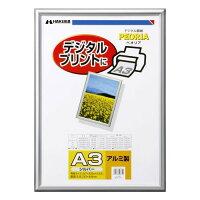 ハクバ デジタル額 ペオリア シルバー A3 FAPE-SVA3(1コ入)