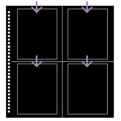 HAKUBA ハクバ SF-6 ポストカードプリント用ブラック替台紙 ブラック