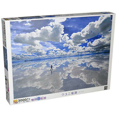ジグソーパズル 究極!パズルの達人 世界の絶景 ウユニ塩湖-ボリビア 3000スモールピース 21-514 エポック