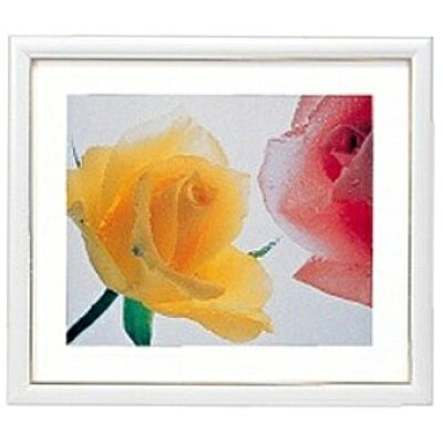 フジカラー 木製額縁 アートフレーム 全紙 ホワイト(1コ入)