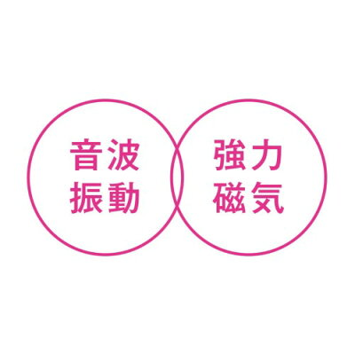 KOIZUMI リセットブラシ KBE-2910/VP