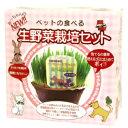 ペットの食べる生野菜栽培セット
