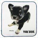プリント ハンカチタオル ミニタオル THE DOG チワワ いぬ 犬飼タオル 25×25cm