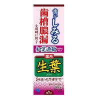 生葉(しょうよう) 薬用ハミガキ 知覚過敏症状予防タイプ ハーブミント味 100g