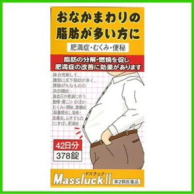 坂本漢法製薬 マスラック2 内脂肪タイプ 378錠