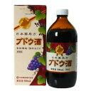 日本薬局方 ブドウ酒