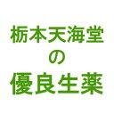 サフラン(25g)(第3類医薬品)(冷え症、血色不良に!生薬サフラン)