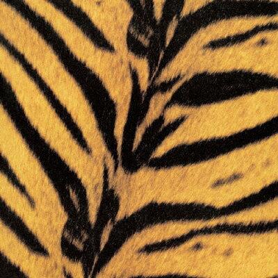 Tigermobile/CD/UPCY-9925