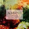 AGMINATE/CD/RETS-21