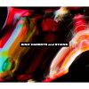 CARROTS and STiCKS(DVD付)/CD/AVCD-96299