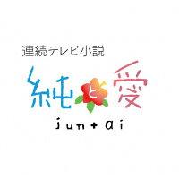 連続テレビ小説 純と愛 総集編/Blu-ray Disc/NSBS-18969