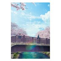 君の膵臓をたべたい DVD 豪華版/DVD/TDV-28060D