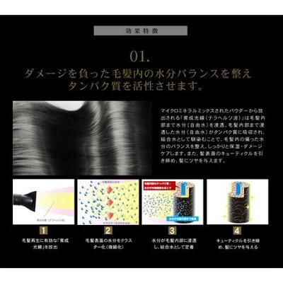 CREATE ION ホリスティックキュア ドライヤー CCID-P01B