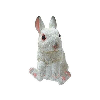 チアフルフレンズ ウサギのリタ