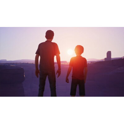Life is Strange 2(ライフ イズ ストレンジ 2)/PS4/PLJM16570/D 17才以上対象