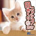 2017年カレンダー / 日めくりニャンコ! / 2017年卓上カレンダー