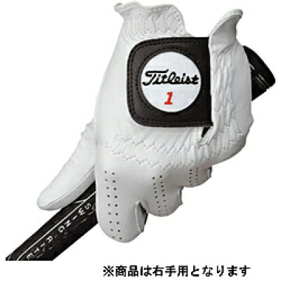 TITLEIST ゴルフ グローブ プロフェッショナルグローブ 右手用 TG77LH-R WT 21
