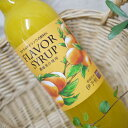 柑橘王国 伊予柑シロップ 濃縮果汁タイプ 560ml