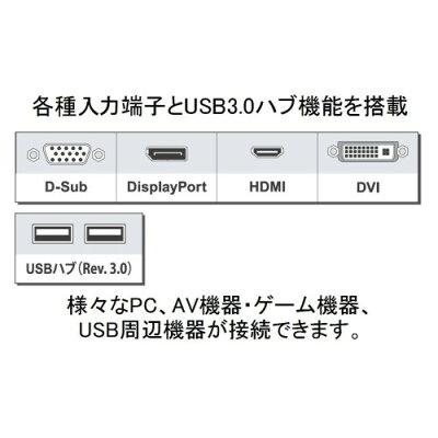EIZO LEDバックライト搭載液晶ディスプレイ EV2456-RBK 24.1インチ