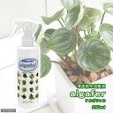 プラネット アルガファル 250ml ハイドロカルチャー用葉面散布培養液