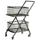 DULTON ダルトン Dual basket cart デュアルバスケットカート