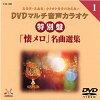 DENON/デノン DVDカラオケ  TJC-501