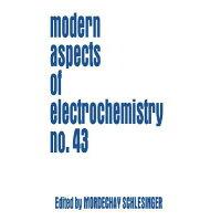Modeling and Numerical Simulations I 2009/SPRINGER VERLAG GMBH/Mordechay Schlesinger