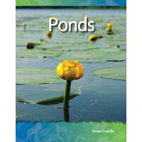 Ponds (Biomes and Ecosystems) /TEACHER CREATED MATERIALS/Yvonne Franklin