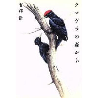 クマゲラの森から   /朝日新聞出版/有沢浩