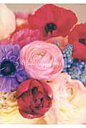 Flower Diary  2013 /エンタ-ブレイン