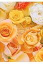 Flower Diary petit  2014 /エンタ-ブレイン