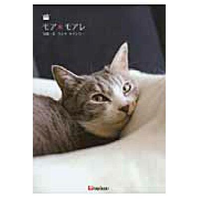 モア・モアレ DVDブック  /TOKIMEKIパブリッシング/ウシキケイシロ-