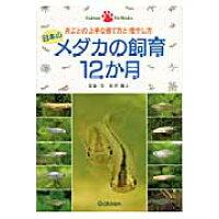 日本のメダカの飼育12か月 月ごとの上手な育て方と増やし方  /学研教育出版/松沢陽士