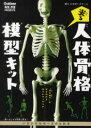 光る!人体骨格模型キット   /学研プラス