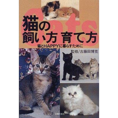 猫の飼い方育て方 猫とhappyに暮らすために  /主婦の友社/主婦の友社