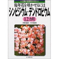 シンビジウム・デンドロビウム12カ月 毎年花を咲かせるには  /主婦の友社/河野通郎