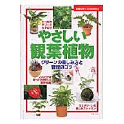 やさしい観葉植物 グリ-ンの楽しみ方と管理のコツ  /主婦の友社/主婦の友社