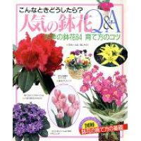 人気の鉢花Q&A こんなときどうしたら? 四季の鉢花64育て方のコツ  /主婦の友社