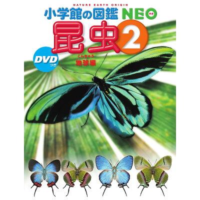 昆虫 DVDつき 2 /小学館/小池啓一