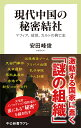 現代中国の秘密結社 マフィア、政党、カルトの興亡史  /中央公論新社/安田峰俊