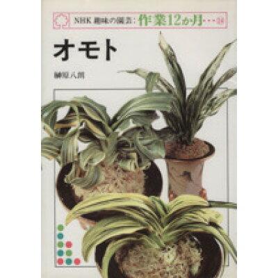 オモト   /NHK出版/榊原八朗