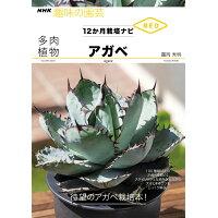 多肉植物アガベ 12か月栽培ナビNEO  /NHK出版/□岡秀明