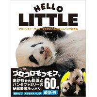 HELLO LITTLE アドベンチャーワールドで生まれたあかちゃんパンダの  /徳間書店/小澤千一朗