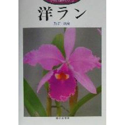 洋ラン   /家の光協会/新井清彦