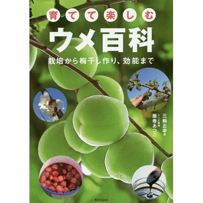 育てて楽しむウメ百科 栽培から梅干し作り、効能まで  /家の光協会/三輪正幸