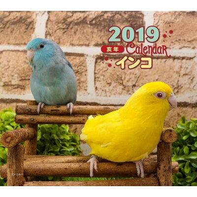 ミニカレンダーインコ  2019年 /誠文堂新光社/大橋和宏