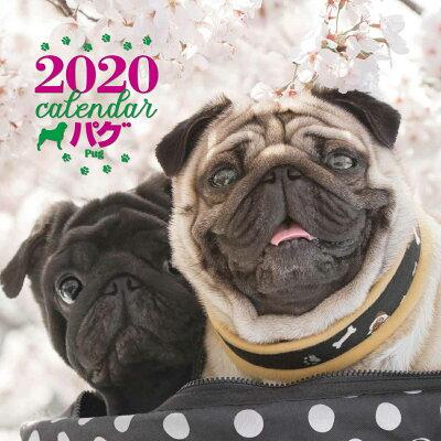 大判カレンダーパグ  2020年 /誠文堂新光社/平林美紀