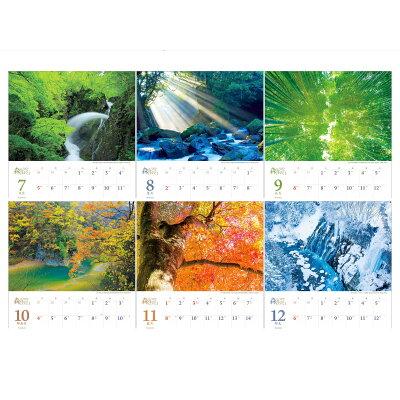 森は生きているカレンダー  2020 /写真工房/写真工房カレンダー